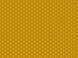 Honeycombs image Backgrounds