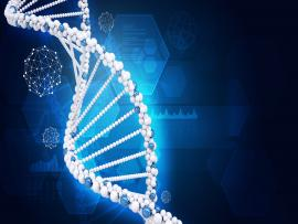 Human DNA Of Hexagons Backgrounds