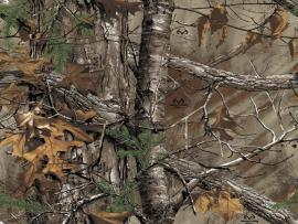 Hunting Camouflage image Backgrounds