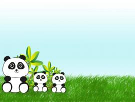 In China  Animals Green Grey White  PPT Frame Backgrounds