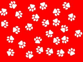 Is A Lourful Red and White Paw Print For Your Desktop Presentation Backgrounds
