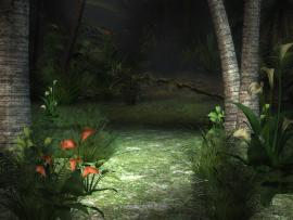 Jungle Graphic Backgrounds