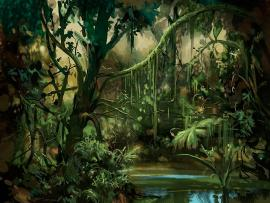 Jungle s Download Backgrounds