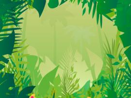Jungle Safari Photo Backgrounds