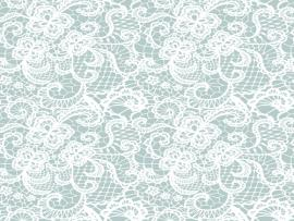 Lace Pattern White Lace Seamless Pattern Design Backgrounds