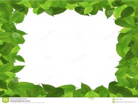 Leaf Border Art Backgrounds