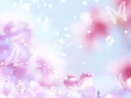 Light Butterfly Slides Backgrounds