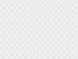 Light Fancy Website Slides Backgrounds