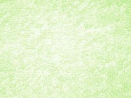 Light Green Pattern image Backgrounds