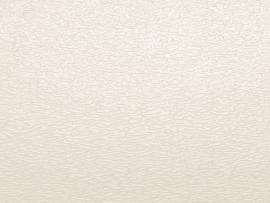 Light White Pattern Presentation Backgrounds