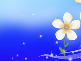 Little Flower Backgrounds