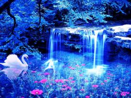 Magical Blue Flowers Photo Backgrounds