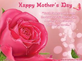 Mothers Day Flowers Slides Backgrounds