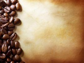 Natural Coffee Beans Wallpaper Backgrounds