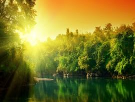 Nature Graphic Backgrounds