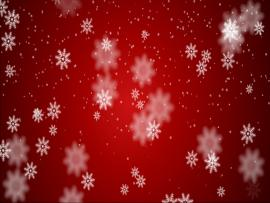 New Christmas Card  Picture Backgrounds
