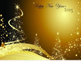 New Year For Photography Free  Happy New Year 2015   Picture Backgrounds