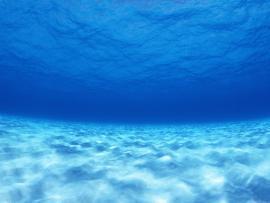Ocean Template Backgrounds