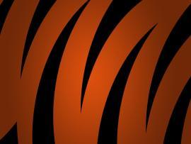 Orange and Black Tiger Template Backgrounds