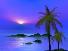 Palm Tree Desktops   Cave Graphic Backgrounds
