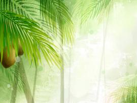 Palm Trees In The Sun Template Backgrounds