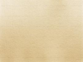 Paper Texture Long Tail Frame Backgrounds