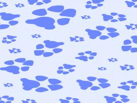 Paw Print Design Backgrounds