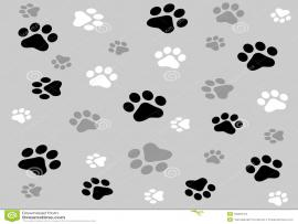 Paw Prints Stock Template Backgrounds