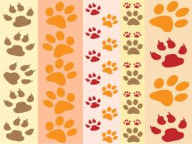 Pics Photos  Paw Print By Karen Arnold Graphic Backgrounds