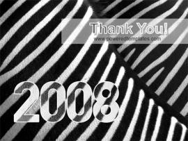 Pics Photos  Zebra 2008 Backgrounds