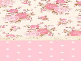 Pink and White Cute Quality Backgrounds