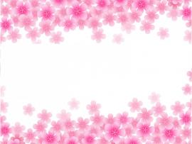 Pink Blooming   Flowers   Art Backgrounds