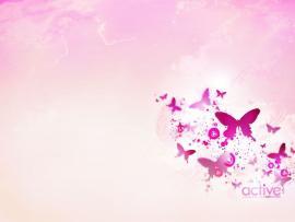Pink Butterflys Photo Backgrounds