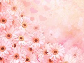 Pink Flower Template Design Backgrounds