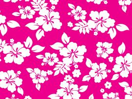 Pink Hawaiian Flower Graphic Backgrounds