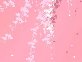 Pink image Backgrounds