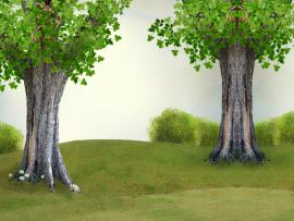 Powerpoint Tree Protection Of Nature and The Trees For   Clipart Backgrounds