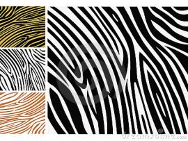 Powerpoint Zebra Image Search Results Clipart Backgrounds