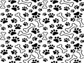 Puppy Paw Print Seamless  Pet Paw Backgrounds