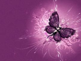 Purple Abstract Vector Butterfly Wallpaper Backgrounds