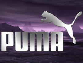 Purple Back Puma Logo Wallpaper Backgrounds