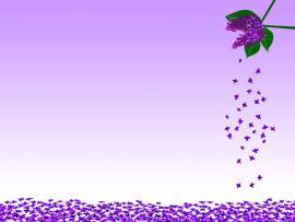 Purple Flower Template Backgrounds