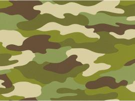 Rasch Camouflage Green 222821 Pictures Photo Backgrounds