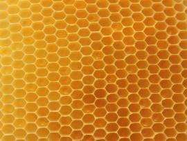 Real Honeycomb Backround Frame Backgrounds