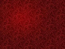 Red Damask  1141261 Photo Backgrounds