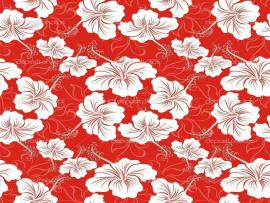 Red Hawaiian Flower Quality Backgrounds