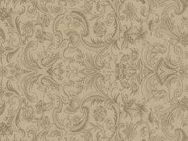 Renaissance Graphic Backgrounds