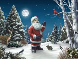 Santa Claus Quality Backgrounds