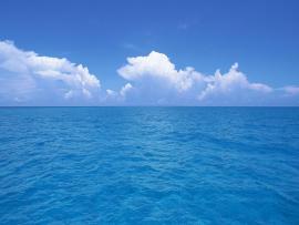 Sea Design Backgrounds