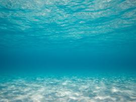 Sea Underwater Backgrounds